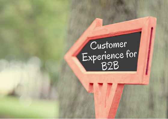 customer experience for b2b